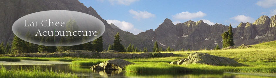 Lai Chee Acupuncture website banner - The Mountain