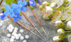 Lai Chee Acupuncture website - column footer picture - acupuncture needles on green leaves